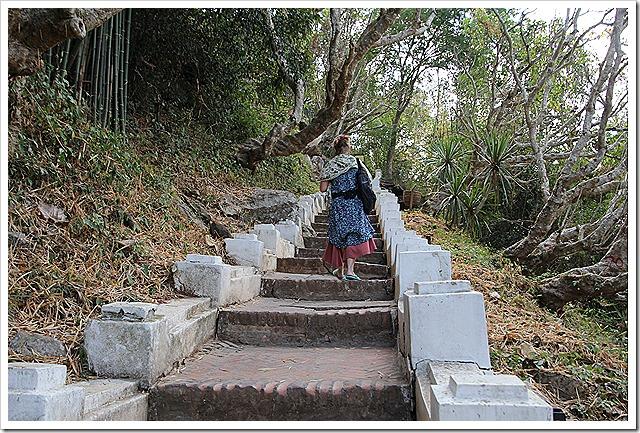 プーシーの丘の階段