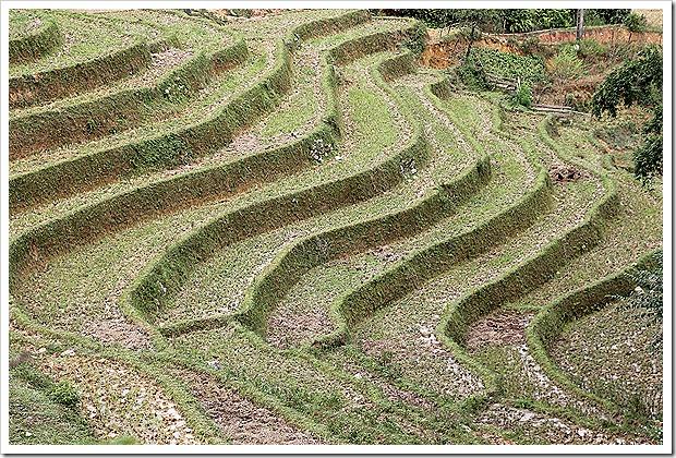 マチャー村~タフィン村のトレッキング